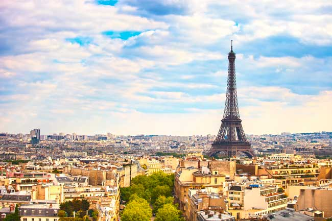 Paris is the largest city and capital of France.